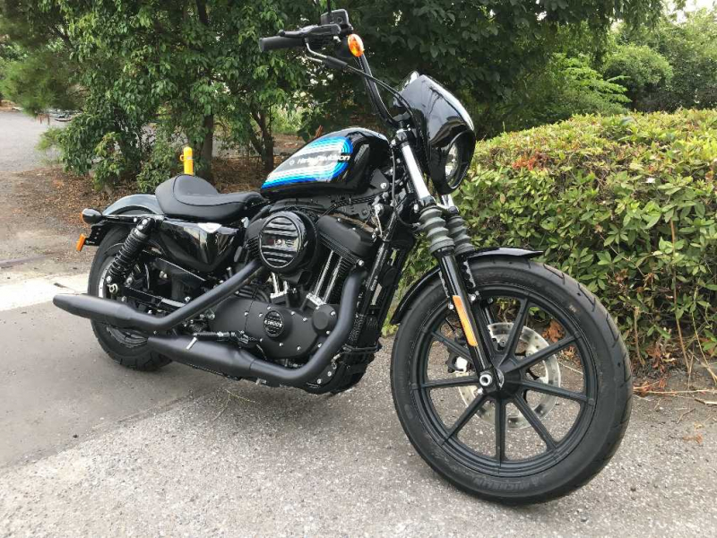 Harley Davidson XL1200NS 2019