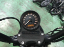 Harley Davidson XL883N 2015