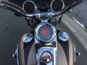 Harley Davidson  2011